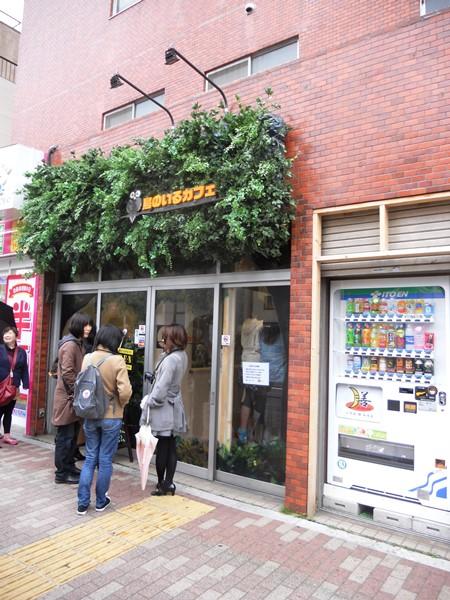Tori No Iru Cafe